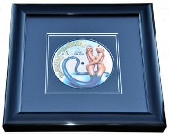 Record and CD Framing