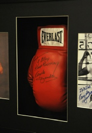 BoxingGlove with Extra Photographs