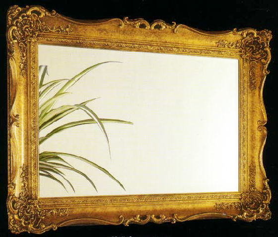 Mirror Framing, Mirrors | Bromley, Chislehurst, Locksbottom ...