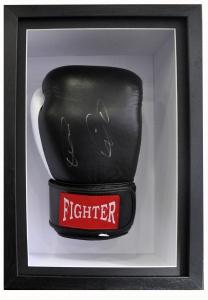 Boxing Glove 01