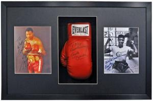 Boxing Glove 3 aperture frame 01 72dpi
