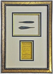 Persian Arrowheads 01 72dpi